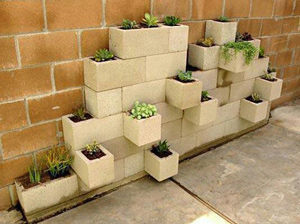 Cinderblock Gardening