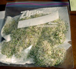 Sprouts in a sealed bag