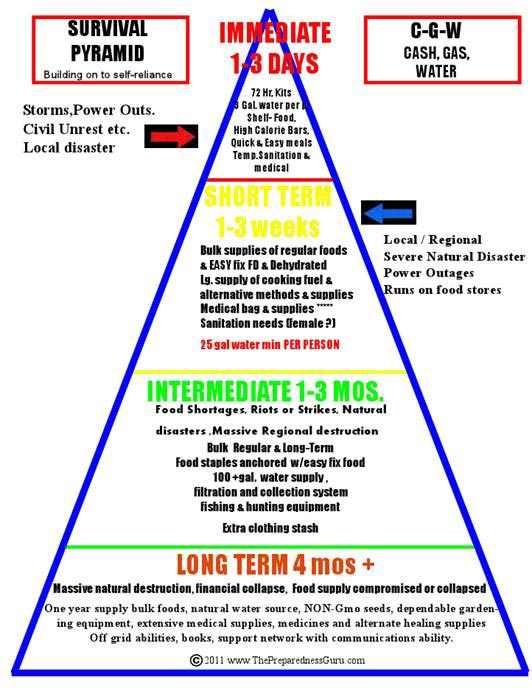 Survival Pyramid
