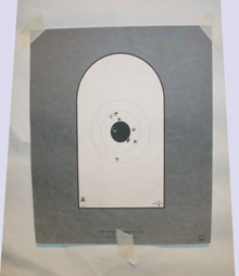 NRA AP-1 target