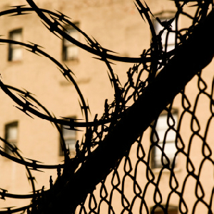 Senate Passes Indefinite Detention Bill With 'Meaningless' Changes