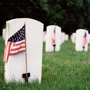Honor Those Who Died For Us