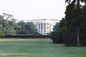 Boston Bruins Goalie Declines Visit To White House For Political Reasons