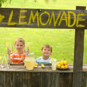 Government Declares War On Lemonade Stands