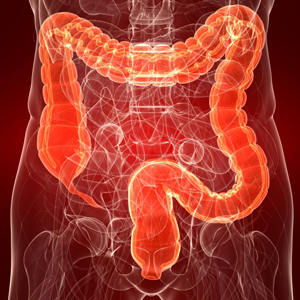 Colon Health Affects Total Health