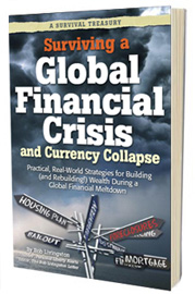 Surviving a Global Financial Crisis and Currency Collapse