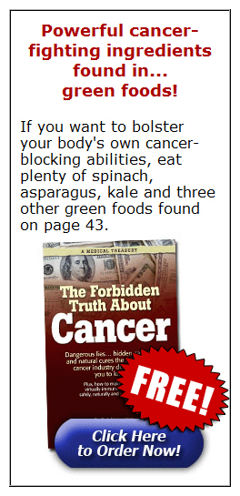 Powerful cancer-fighting ingredients found in... green foods!