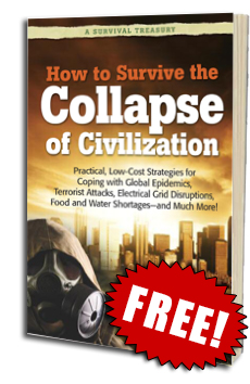 Collapse of Civilization book cover.