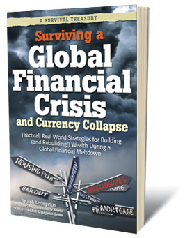 Surviving a Global Financial Crisis